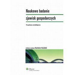 Naukowe badanie zjawisk gospodarczych. Perspektywa metodologiczna [PRZEDSPRZEDAŻ] (opr. miękka)