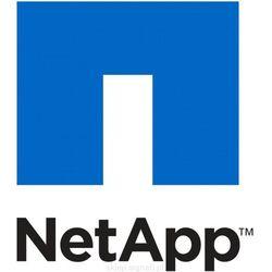 NETAPP NetApp Controller FAS3240 with memory (111-01010)