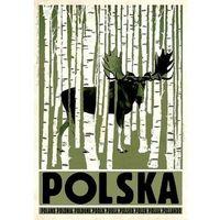 Plakaty, Plakat Polska brzozy łoś - Ryszard Kaja