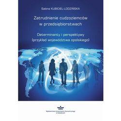 Zatrudnienie cudzoziemców w przedsiębiorstwach - Sabina Kubiciel-Lodzińska - ebook