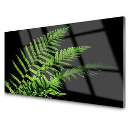 Obraz Szklany Paprotka Paprocie Liście