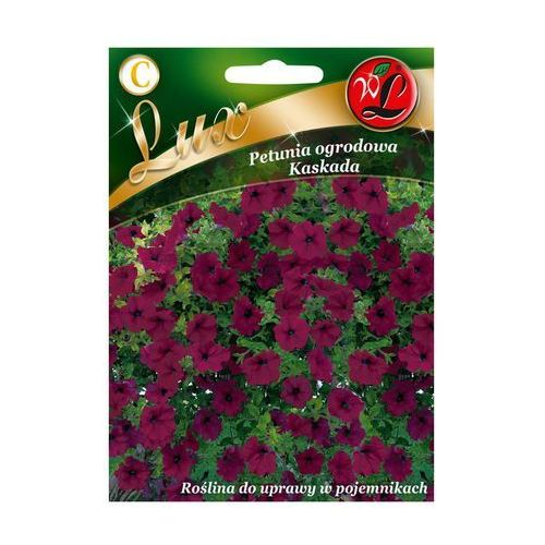 Nasiona, Petunia ogrodowa KASKADA W. LEGUTKO