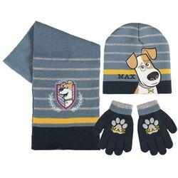 Czapka, szalik i rękawiczki Sekretne Życie Zwierzaków Domowych Max