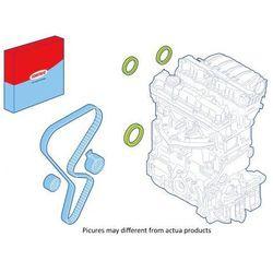 Zestaw uszczelniacza wargowego, silnik CORTECO 289117