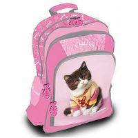 Tornistry i plecaki szkolne, Plecak szkolny kot