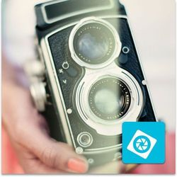 Adobe Photoshop Elements 12 PL Win - dla instytucji EDU