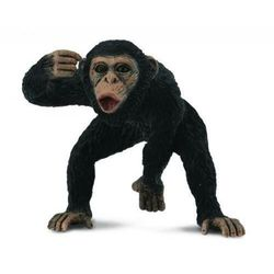 Szympans samiec - figurka - COLLECTA
