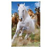 Pozostałe artykuły szkolne, Mini kartka 3D Konie
