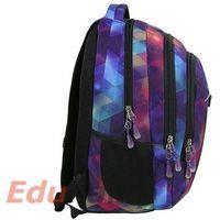 Tornistry i plecaki szkolne, Plecak młodzieżowy 17 D 30