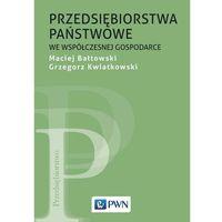 Biblioteka biznesu, Przedsiębiorstwa państwowe we współczesnej gospodarce - Maciej Bałtowski - ebook