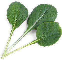 Véritable - Smaki Azji - wkład nasienny - Tat-soi (do doniczek autonomicznych)