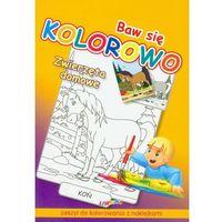 Książki dla dzieci, Baw się kolorowo Zwierzęta domowe Koń. Zeszyt do kolorowania z naklejkami (opr. miękka)