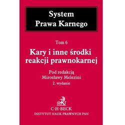Kary i inne środki reakcji prawnokarnej System Prawa Karnego Tom 6 - Mirosława Melezini (opr. twarda)
