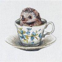 Pozostałe artykuły szkolne, Karnet kwadrat z kopertą Baby Hedgehog