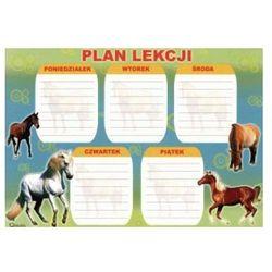 Plan lekcji D
