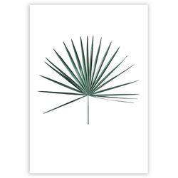 Dekoria Plakat Tropical Leaf Emerald Green, 40 x 50 cm