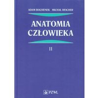 Książki medyczne, Anatomia człowieka Tom 2 (opr. twarda)