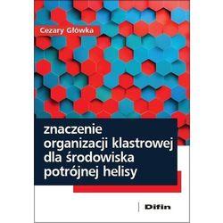 Znaczenie organizacji klastrowej dla środowiska potrójnej helisy - Cezary Główka (opr. miękka)