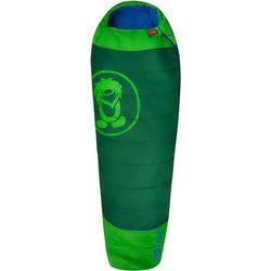 TROLLKIDS Fjell Dreamer Sleeping Bag Extendable Kids, zielony Right Zipper 2021 Śpiwory Przy złożeniu zamówienia do godziny 16 ( od Pon. do Pt., wszystkie metody płatności z wyjątkiem przelewu bankowego), wysyłka odbędzie się tego samego dnia.