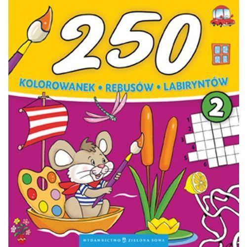 Kolorowanki, 250 kolorowanek, rebusów, labiryntów. Część 2 - Praca Zbiorowa