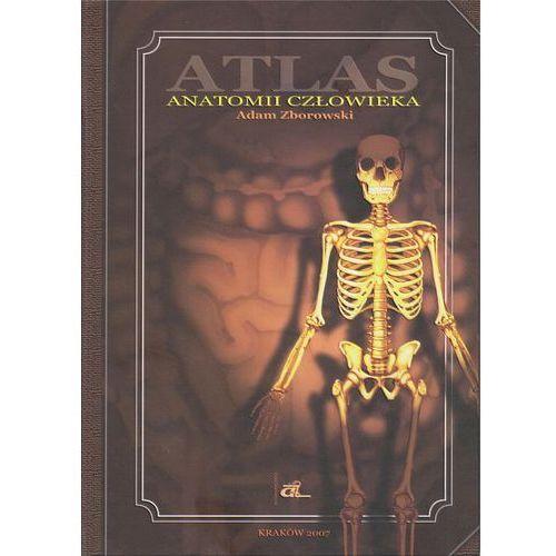 Książki medyczne, ATLAS ANATOMII CZŁOWIEKA / A-Z (opr. twarda)