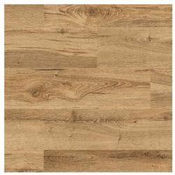 Kronospan Panele podłogowe laminowane dąb armoury ac5 8 mm (5907555422224)