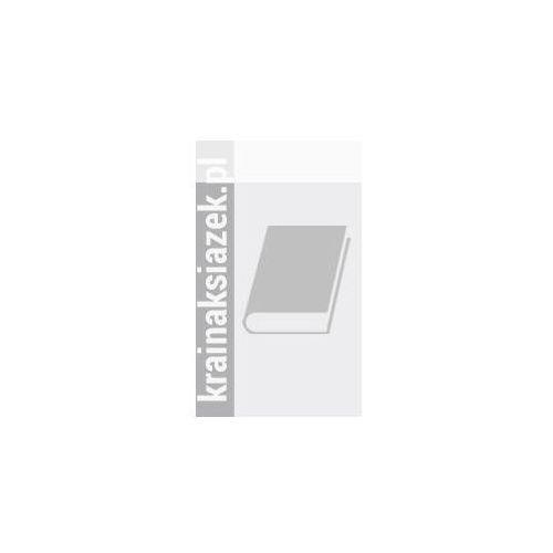 Książki do nauki języka, Menschen A2 Vokabeltaschenbuch (opr. miękka)