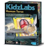 Gry dla dzieci, Russell Anatomia Klatka Piersiowa 3373