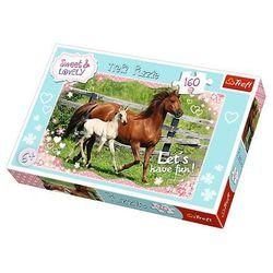 Puzzle Koně cválající 41x27,5cm 160 dílků v krabici 29x19x4cm