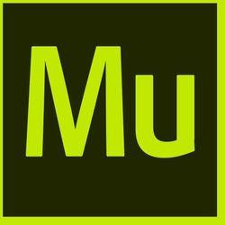 Adobe Muse CC ENG (1 urządzenie) EDU