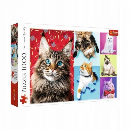 Puzzle, Puzzle 1000 elementów Wesołe koty