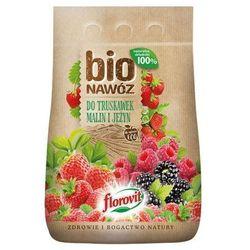 Bionawóz do truskawek Florovit 5 l