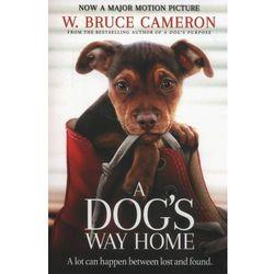 A Dog's Way Home (opr. miękka)
