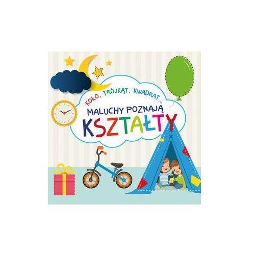 Książki dla dzieci, Maluchy poznają kształty (opr. kartonowa)
