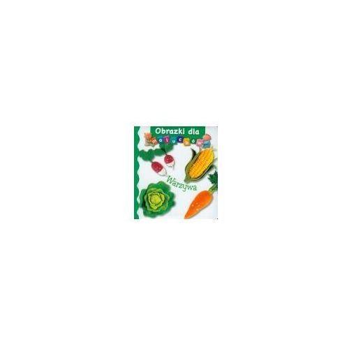 Książki dla dzieci, Warzywa. Obrazki dla maluchów (opr. twarda)