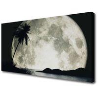 Obrazy, Obraz na Płótnie Noc Księżyc Palma Krajobraz