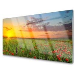 Panel Szklany Słońce Łąka Kwiaty Natura