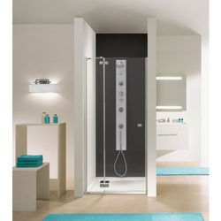 SANPLAST FREE LINE Drzwi wnękowe 90cm, szkło transparentne DJ2/FREE 600-260-0320-42-401