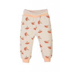Spodnie dresowe niemowlęce 5M3319