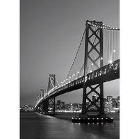 Fototapety, Fototapeta San Francisco Skyline 387