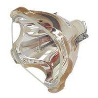 Lampy do projektorów, Lampa do LIESEGANG DV 5000 vario+ - kompatybilna lampa bez modułu