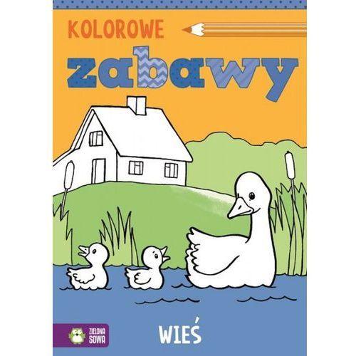 Książki dla dzieci, Kolorowe zabawy Wieś (opr. miękka)