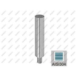 Trzpień nierdzewny M10 AISI304, K320, D12/L120, M8