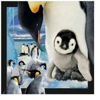 Pozostałe artykuły papiernicze, Pocztówka 3D Pingwin