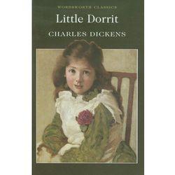 Little Dorrit (opr. miękka)