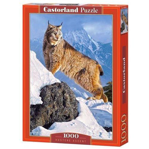 Puzzle, 1000 ELEMENTÓW Austere Ascent