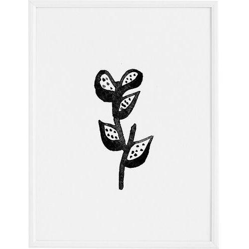 Plakaty, Plakat Plant 40 x 50 cm