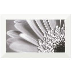 Dekor Frosto Cersanit 25 x 40 cm white gerbera flower
