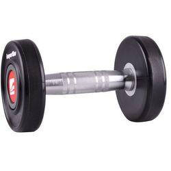Hantla inSPORTline Profi 2x2 kg