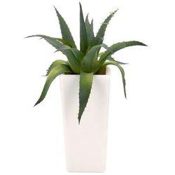 Sztuczna roślina doniczkowa, sztuczny kwiat w doniczce - aloes